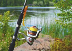 How to Choose a Fishing Line for Your Spinning Reel
